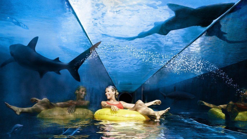 """Shark Attack"" A water ride in Aquaventure at Atlantis"