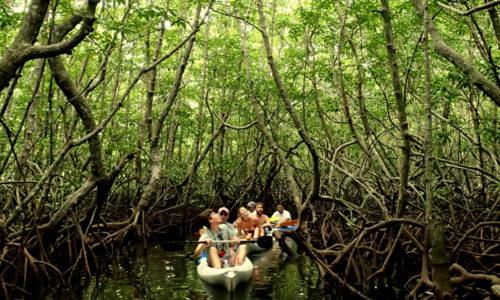 Gaya Island Resort in Borneo, Malaysia