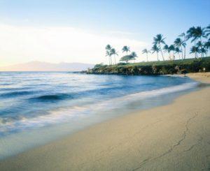 kapalua bay beach near the resort