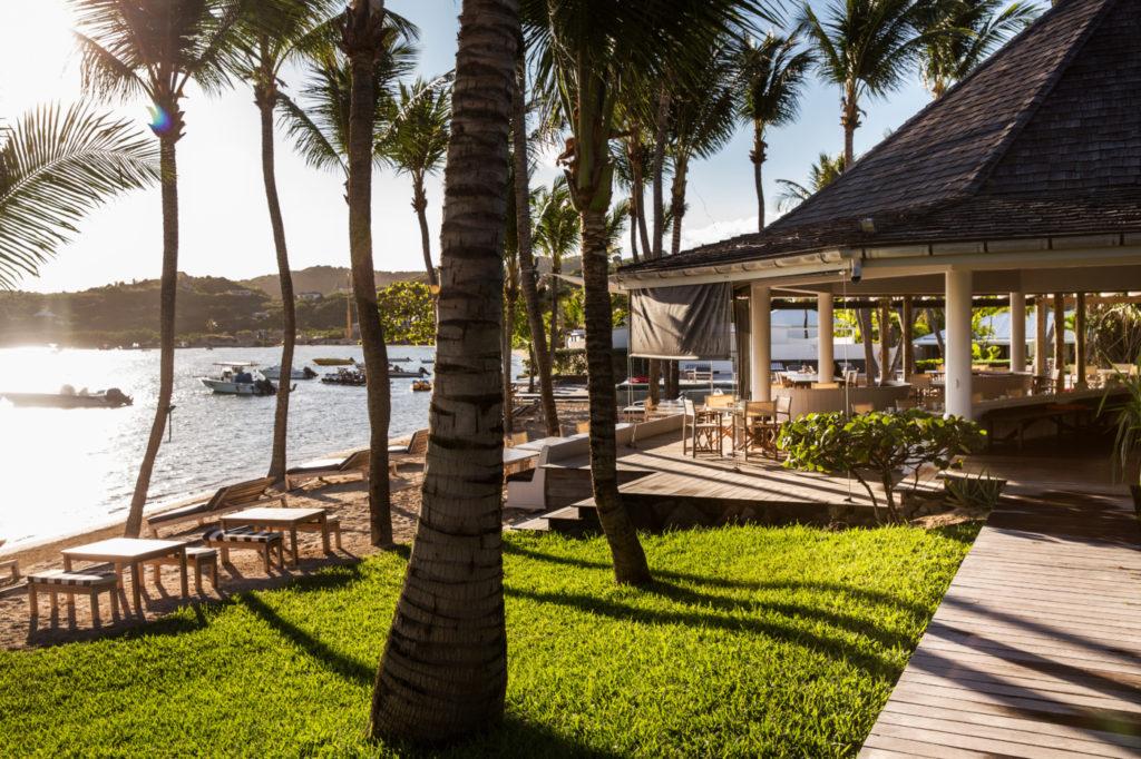 palm trees and a gazebo on the St. Barts island