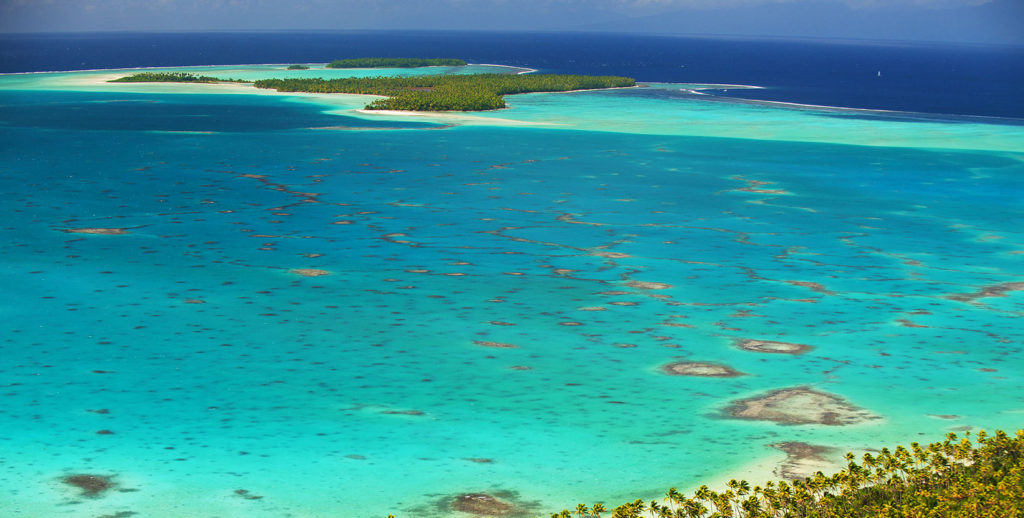 crystal blue waters that surround the island of tetiaroa in french polynesia