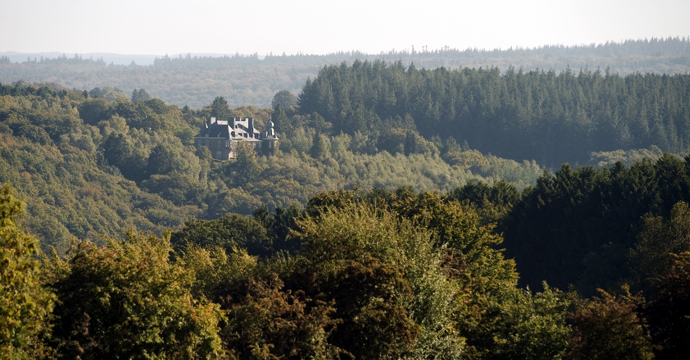 Manoir de Lebioles from a distance surrounded by a forest.